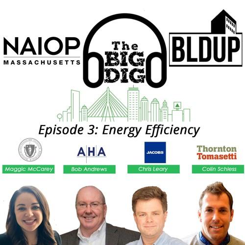 Big Dig Podcast Episode 3 - Energy Efficiency