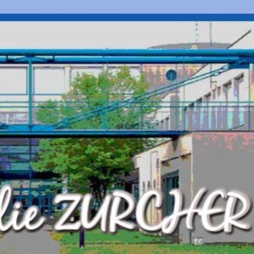 La 2eD fait le mur - lycée Amélie Zurcher