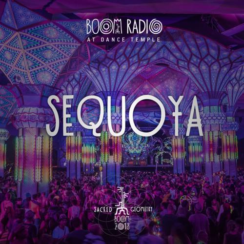 Sequoya - Dance Temple 25 - Boom Festival 2018