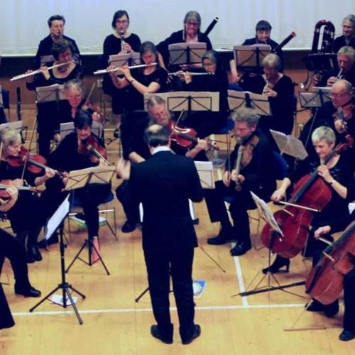 SLO 2019: Mahler Symphony 5 - Adagietto