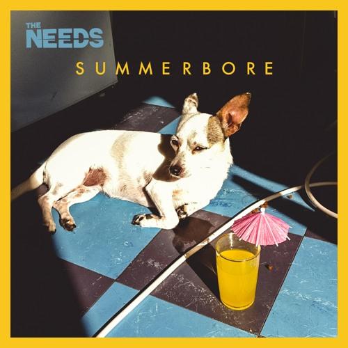 The Needs - Summerbore
