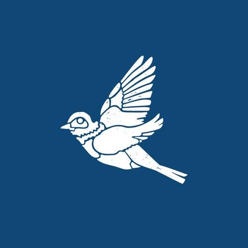 Canyon City - Bluebird