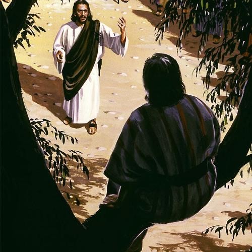 Rencontres De Jésus - Zachée