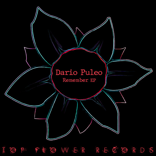 Dario Puleo - Electronic Shout (Original mix)
