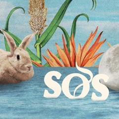 Felix Eul @ SOS U.Ground - Kulturkosmos Lärz 6.4.2019