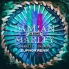 Skrillex - Make it Bun Dem (Euphor Remix)170 BPM [Free Download]