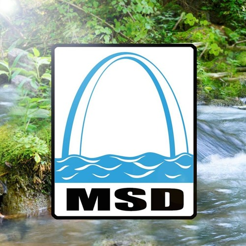 MSD: Not a flood authority