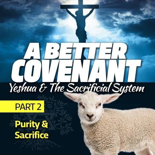 A Better Covenant - Yeshua and the Sacrificial System, Part 2: Purity & Sacrifice