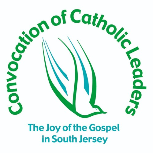 Convocation of Catholic Leaders: Plenary Day 1 - Julianne Stanz