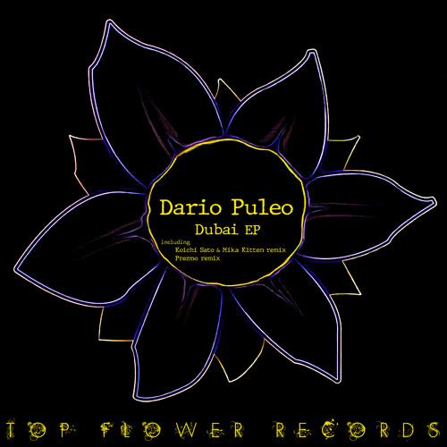 Dario Puleo - Dubai (Prezmo remix)