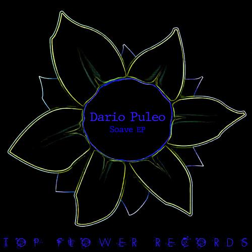 Dario Puleo - Soave (Original mix)