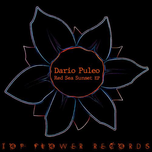 Dario Puleo - Red Sea Sunset (Radio version)