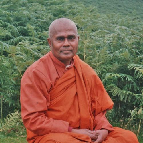 16 Chánh Tinh Tấn Bước 6 - Bhante Gunaratana