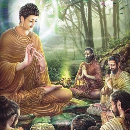 Nữ Tôn Giả Samavati- Hiện Thân Của Lòng Từ Ái