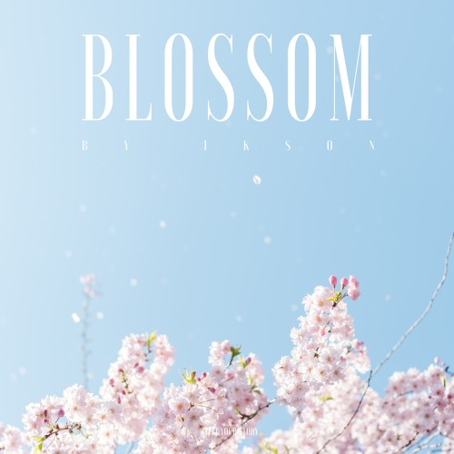 Blossom (Free Download)