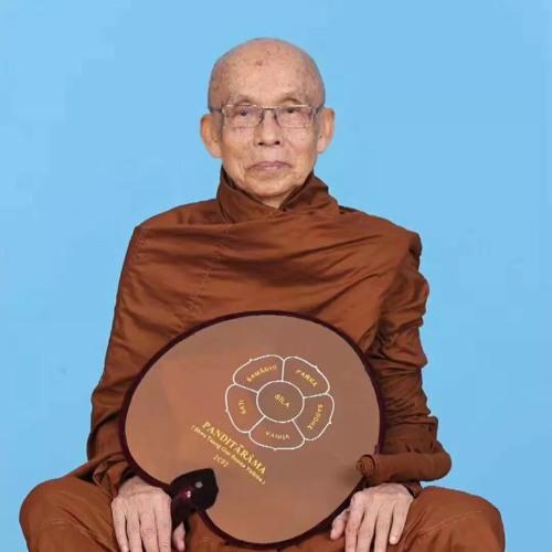 Pháp Thoại Khoá Thiền 8 Ngày 7 - Ngài Beelin TMC