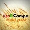 10,04 ES EL CAMPO DE CYL