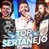 Sertanejo Abril 2019 Lançamentos TOP 35 (Baixar CD)