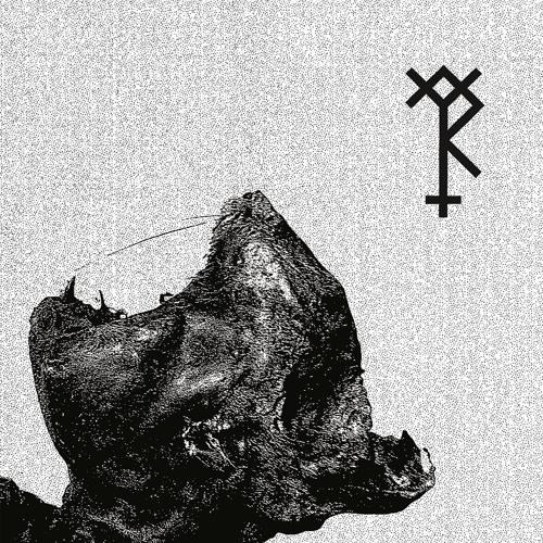 Trepaneringsritualen - Konung Krönt I Blod (Nordvargr - Rework) - Excerpt