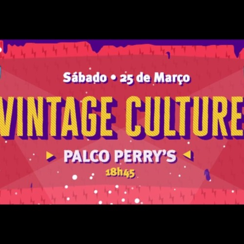 Vintage Culture Lollapalooza 2019 By: Fildex