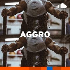 Rap Workout Bangers: Aggro