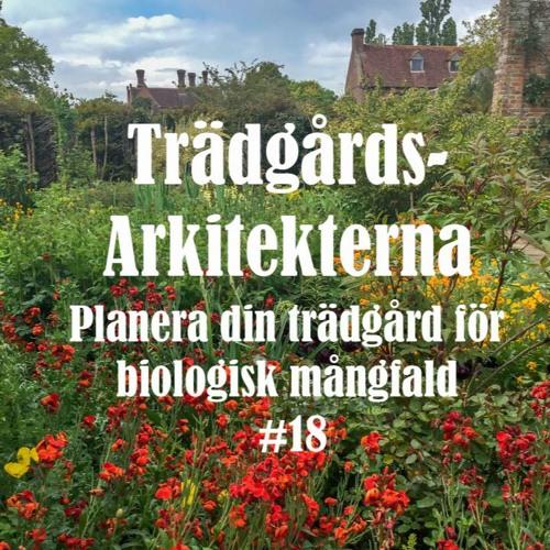 Planera din trädgård för biologisk mångfald