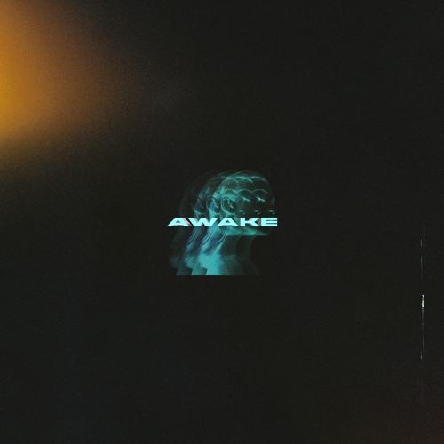 AWAKE FLIP