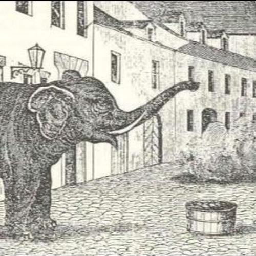 Der Elefant von Murten