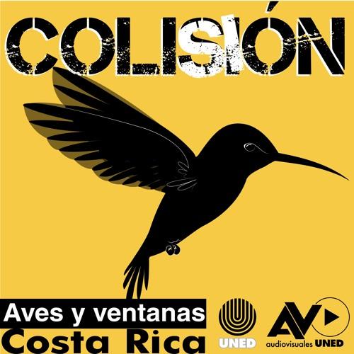 Campaña radiofónica Proyecto colisión aves y ventanas CR