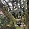 notbetter (only queens)(demo)