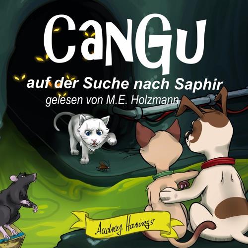 CanGu - Auf der Suche nach Saphir