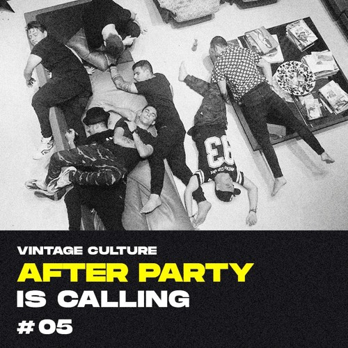 05 >> Vintage Culture Afterparty Is Calling 05 By Vintage Culture