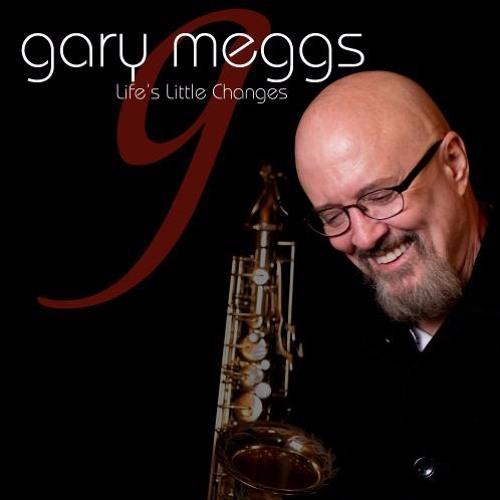 Gary Meggs : Life's Little Changes