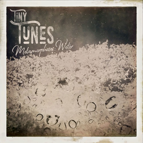 Tiny Tunes, Metamorphoses: H2O