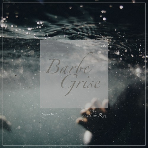 Barbe Grise