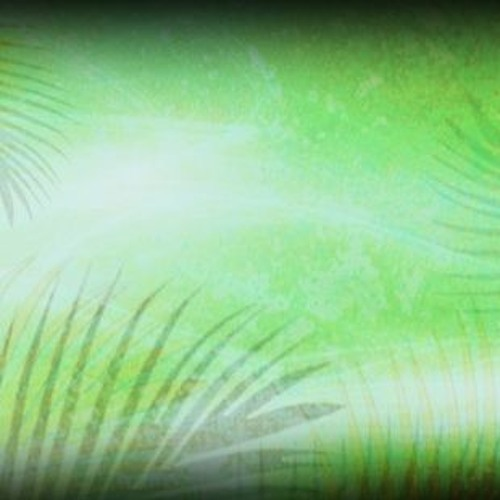 The Implications Of Palm Sunday