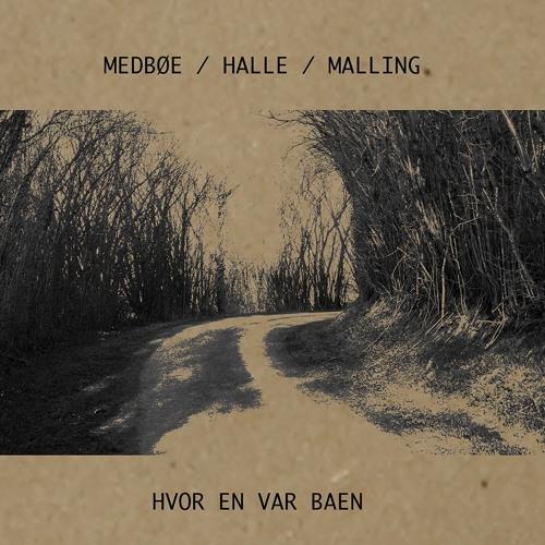 Medbøe  | Halle | Malling - Folk Der Kam Ind Ad E Bagdör