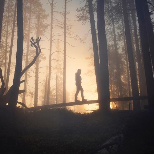 uusin parhaiten myydä vakaa laatu Chopping Wood With a Knife, Forest - Only in Lapland ...