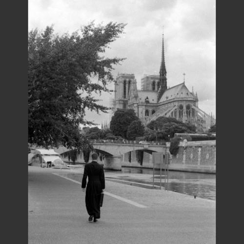 The bells of Notre Dame, Paris, 2015. Image & sound ©Juno Doran
