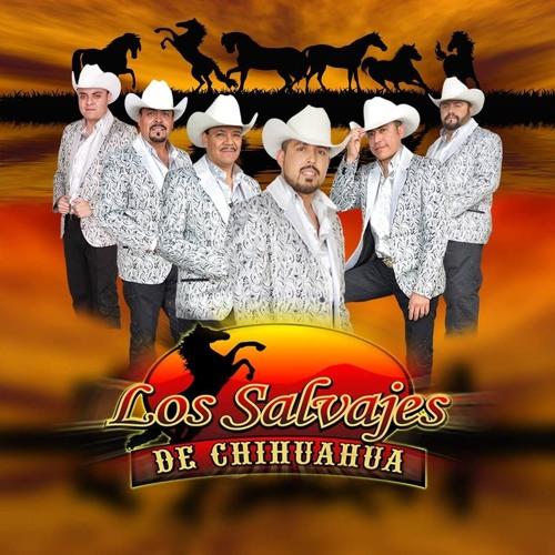 LOS SALVAJES DE CHIHUAHUA EN VAQUEROS NIGHT CLUB