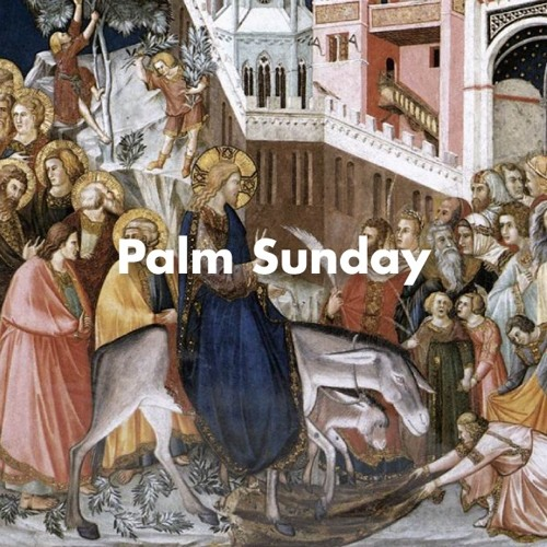 Sermon for Palm Sunday