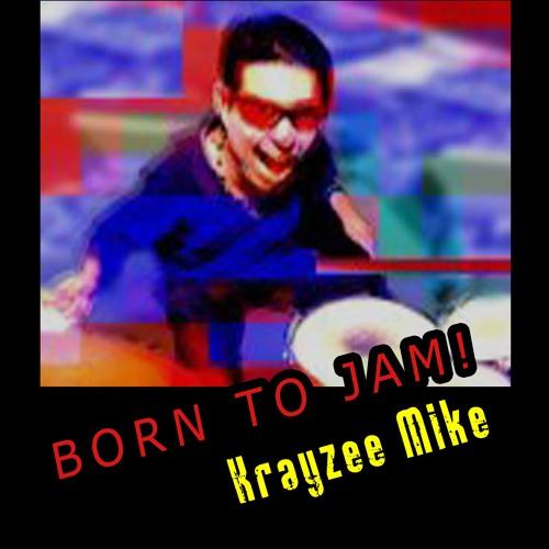 We've Gotta Groove Goin' On - Krayzee Mike