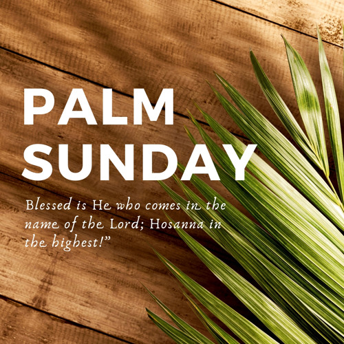Palm Sunday | Jesus Declared King
