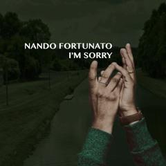 Nando Fortunato - I'm Sorry (Extended Mix)