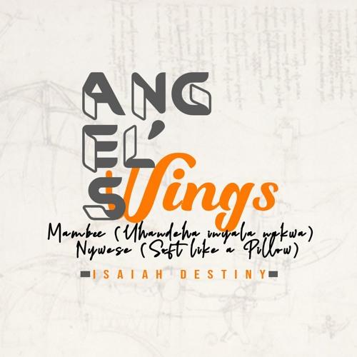 Angles Wings - Isaiah Destiny