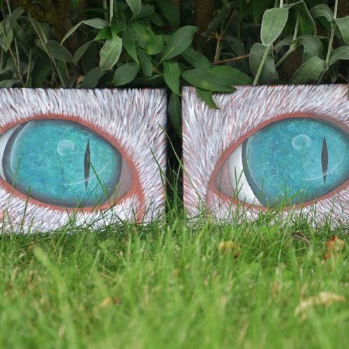 eyes 1904