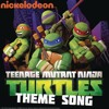 Teenage Mutant Ninja Turtles Theme Song (TMNT)