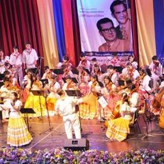 Festival Músical de Colombia en Ibagué