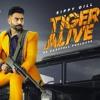 Tiger Alive  | Sippy Gill | Western Pendu | New Punjabi Songs 2019