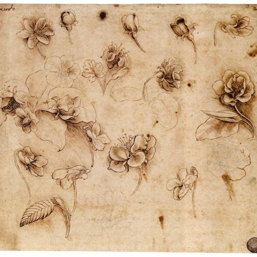 Leonardo Saw the Spring for Flute and Piano